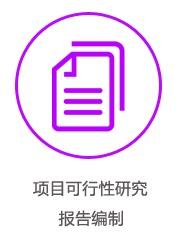 项目可执行性研究报告编制